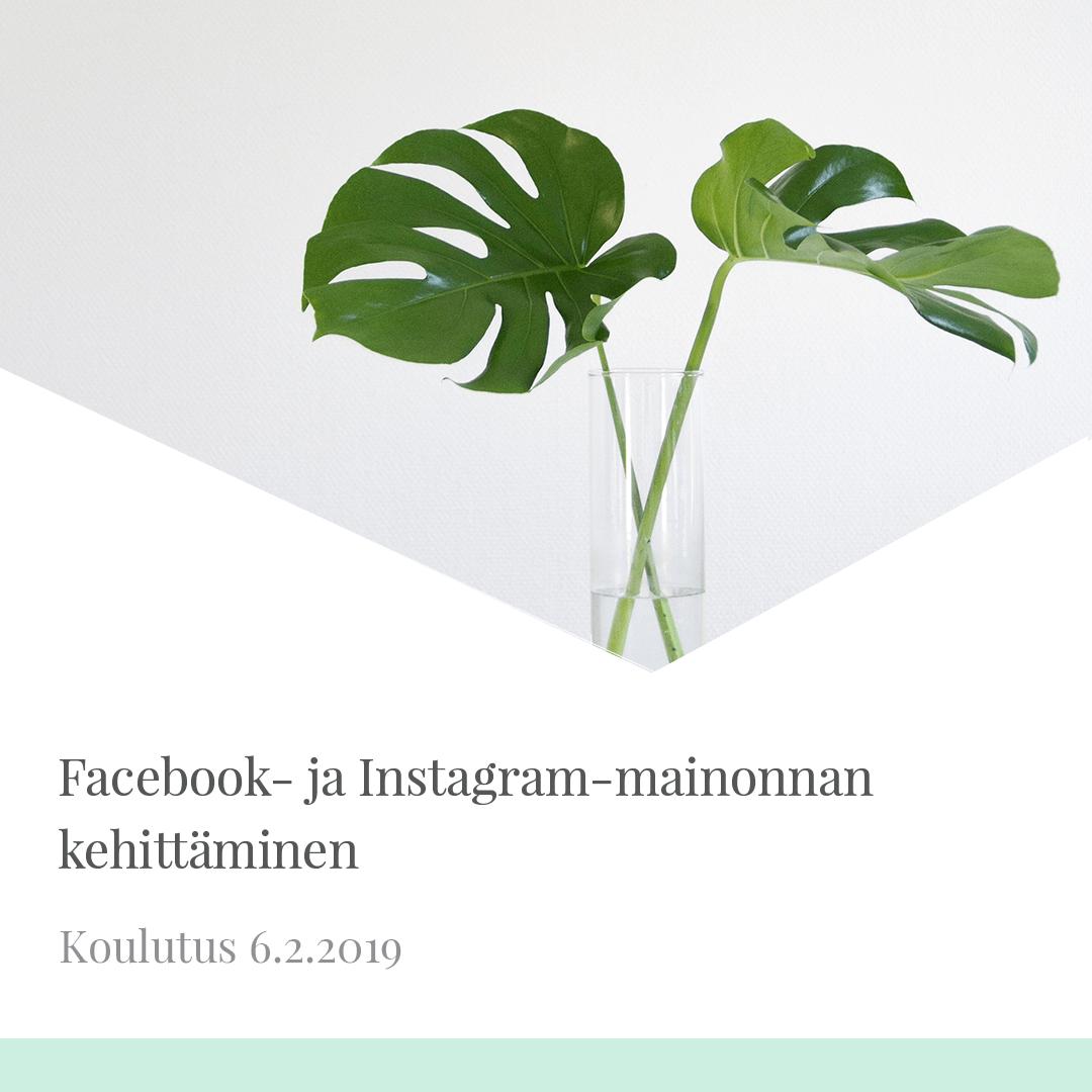 Facebook- ja Instagram-mainonnan kehittäminen